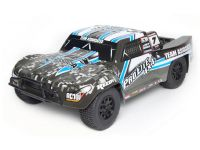 Image Of Associated Qualifier Series ProLite 1:10 RTR 4WD SC Truck - Grey