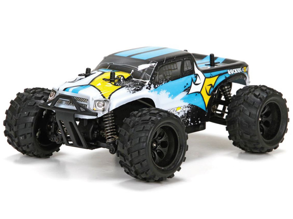 ECX 1/24th Ruckus 4WD Monster Truck Black/White RTR ECX00013T1